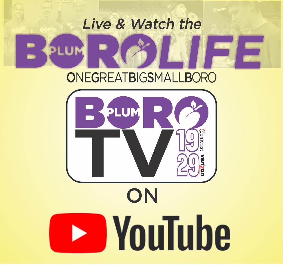 Boro TV
